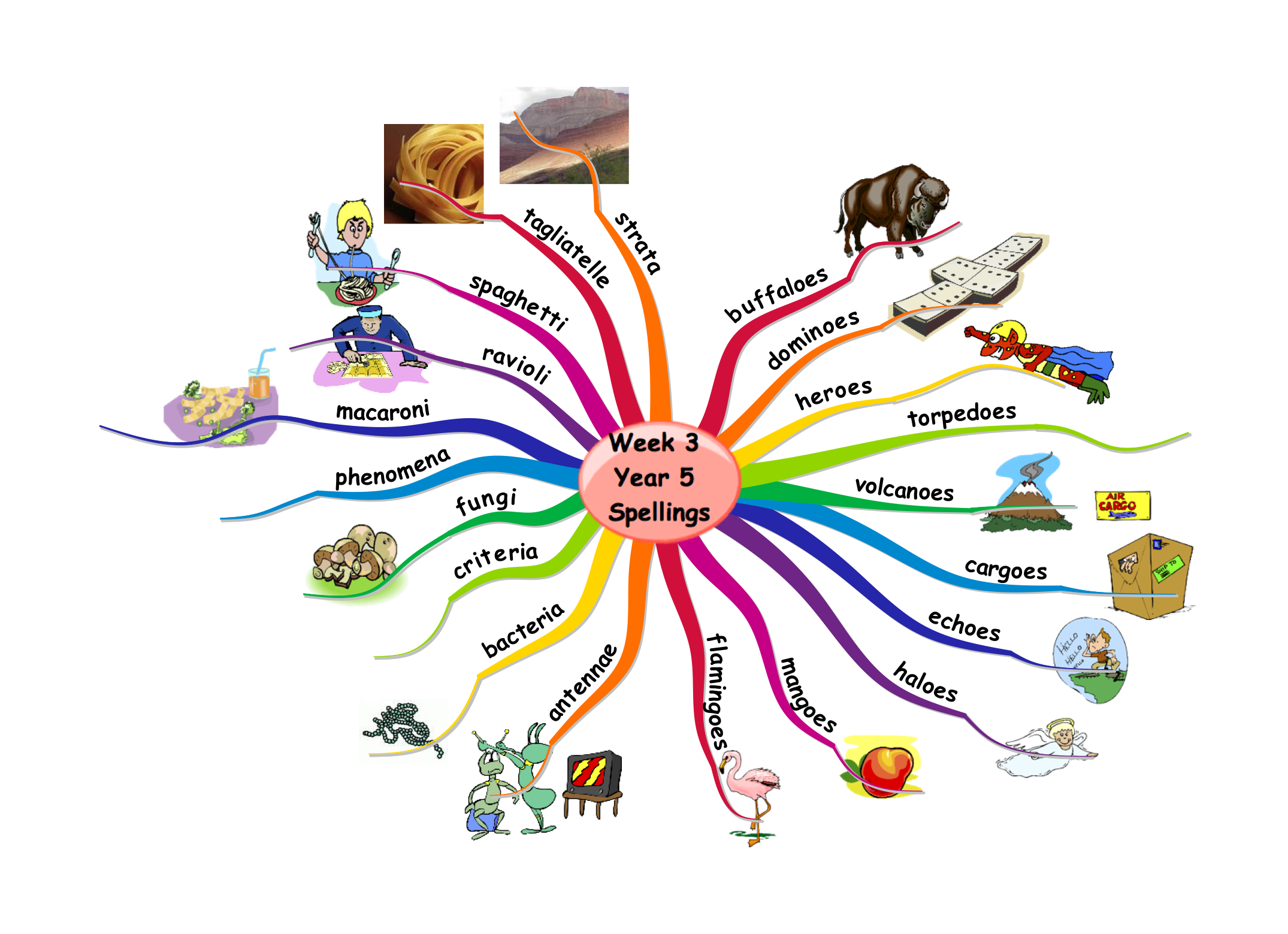 Mind Maps for Education  Mind Mapping amp; Creative Thinking